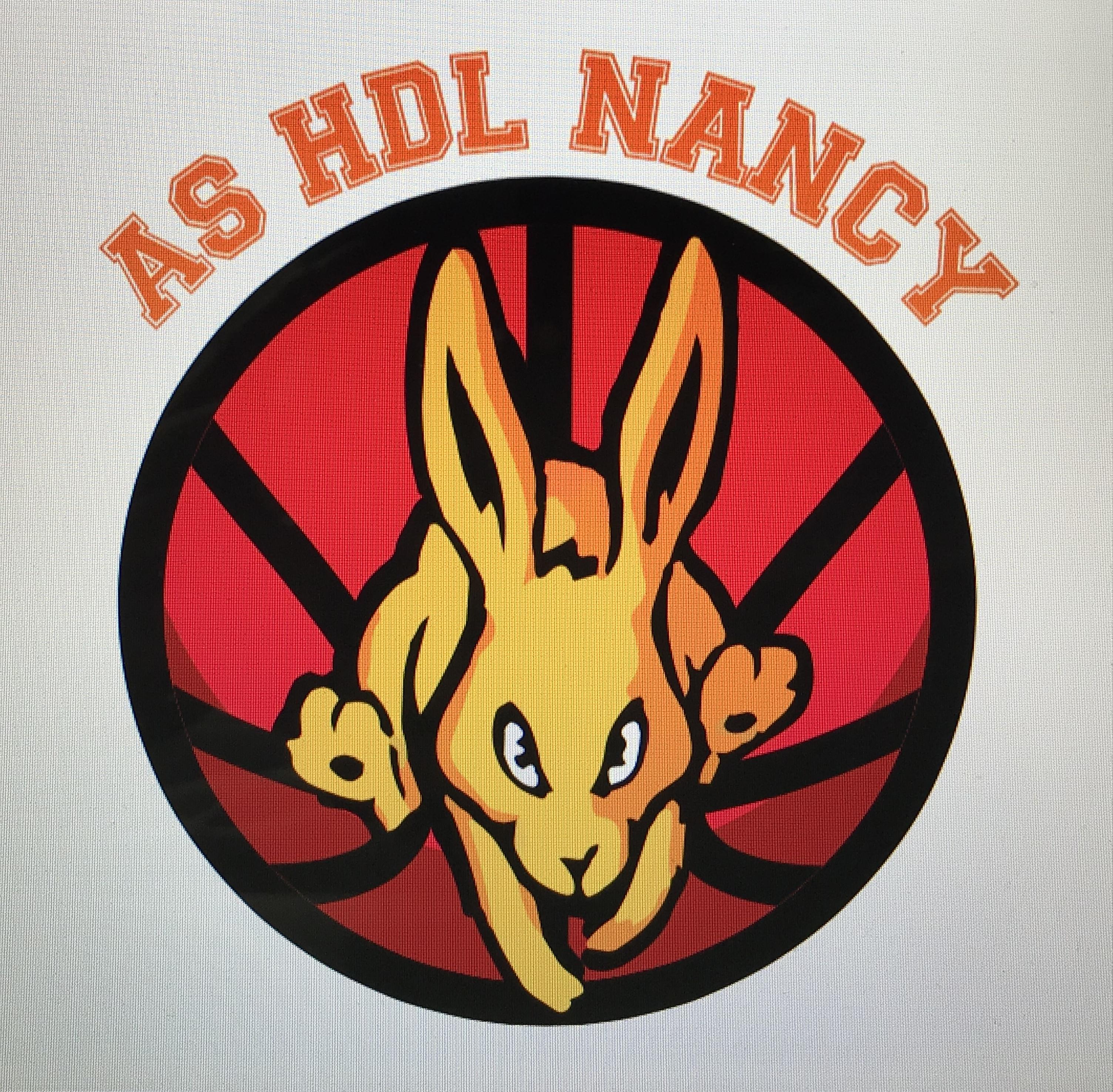 HDL Nancy Basket